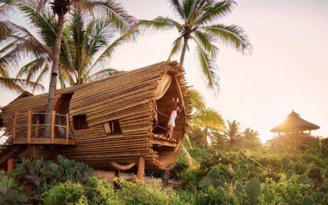 Serunya Menginap Di Rumah Pohon Dengan Pemandangan Yang Sempurna, Cocok Juga Jadi Tempat Foto Prawedding